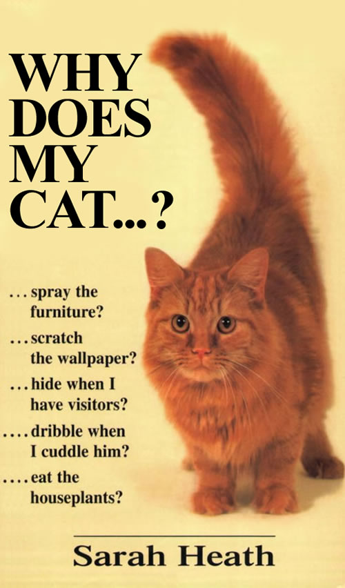 toilet training your cat